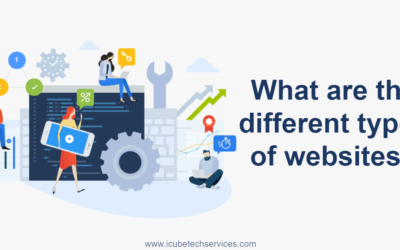 What are the different types of websites?